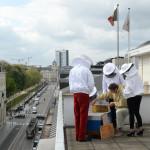 Le Soir adopte deux nouvelles colonies d'abeilles